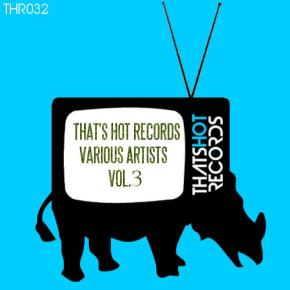 10 Thats Hot Records Volume 3